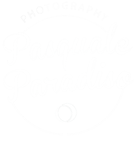 Logo Pasquale Paradiso